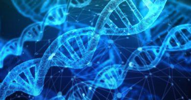 Chemie DNA