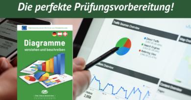 Diagramme verstehen und beschreiben Trainingsheft Deutsch als Fremdsprache